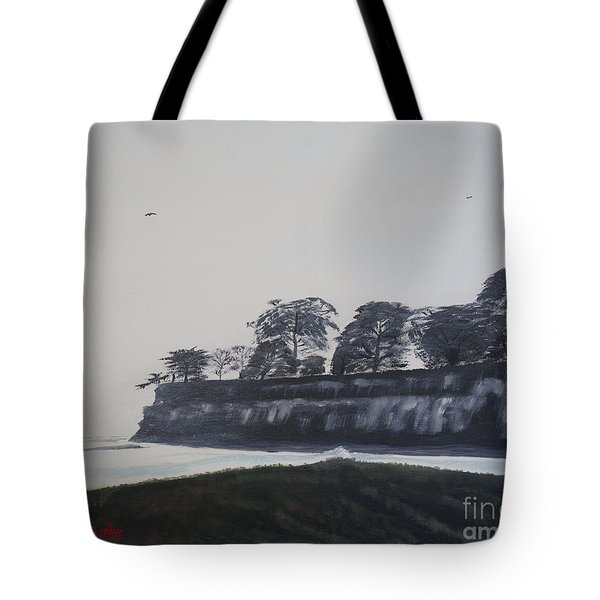 Santa Barbara Shoreline Park Tote Bag by Ian Donley