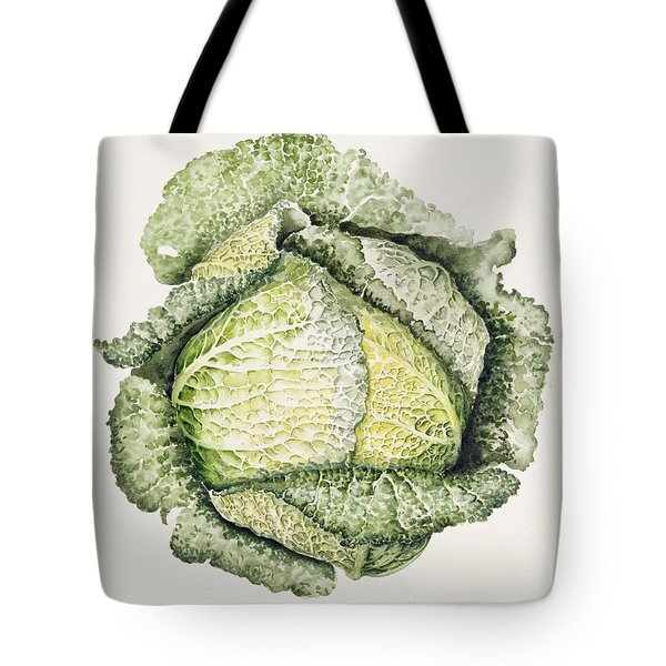 Savoy Cabbage  Tote Bag by Alison Cooper