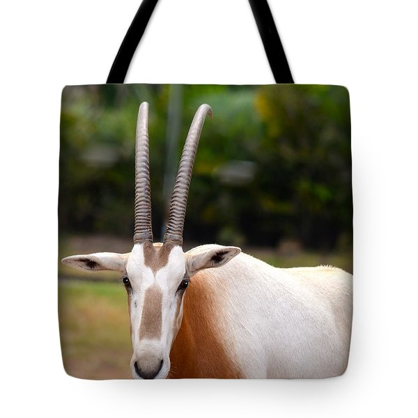 Scimitar Horned Oryx 2 Tote Bag by Richard Bryce and Family