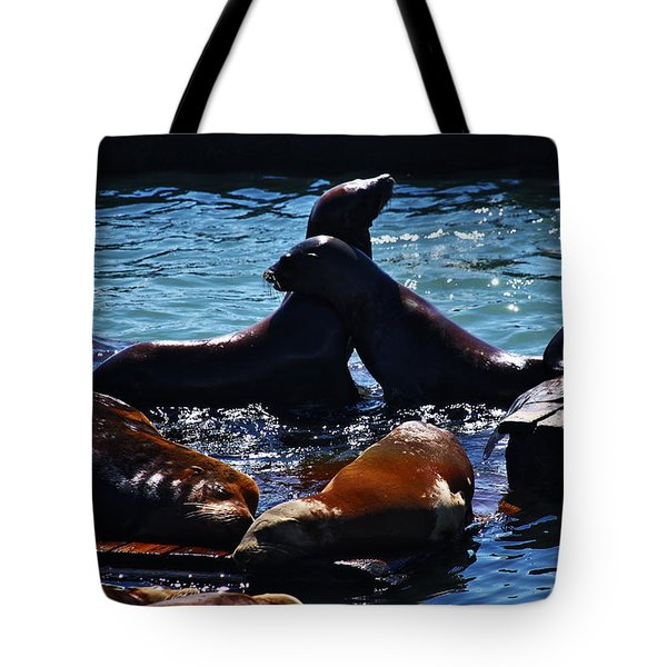Sea Lions In San Francisco Bay Tote Bag by Aidan Moran