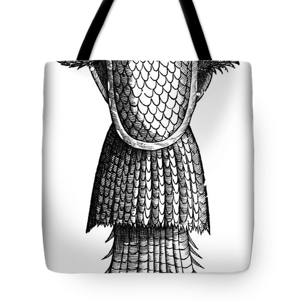Sea Monk, Legendary Creature Tote Bag by Photo Researchers