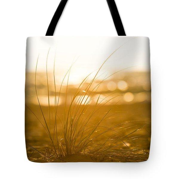 Sea Oats Sunset Tote Bag by Sebastian Musial