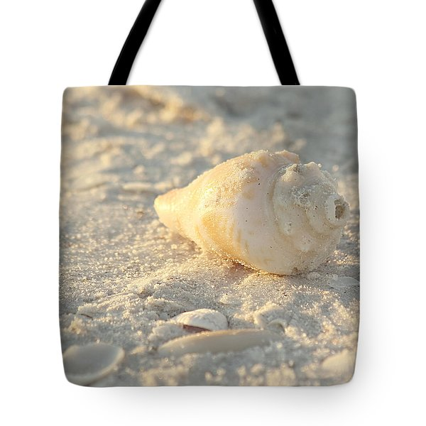 Sea Shells Tote Bag by Kim Hojnacki