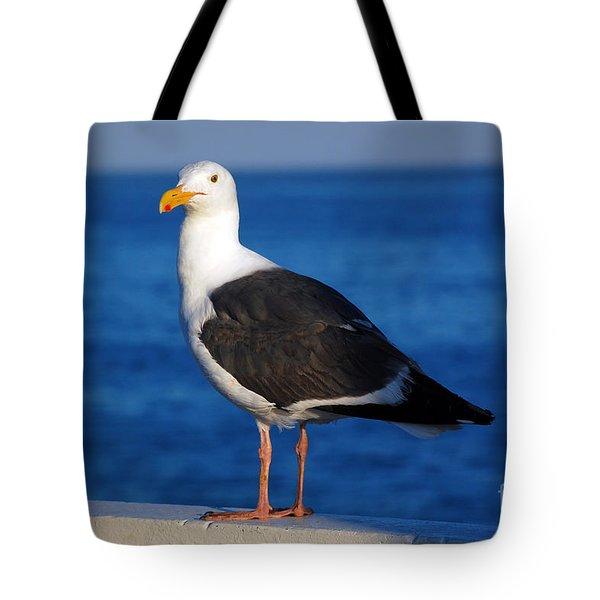 Seagull 2 Tote Bag by Debra Thompson
