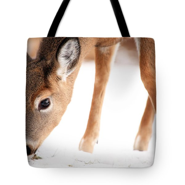 Searching Tote Bag by Karol Livote