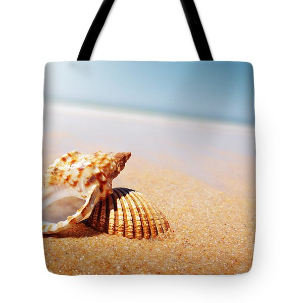 Seashell and Conch Tote Bag by Carlos Caetano