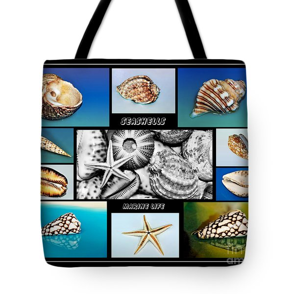 Seashell Collection Tote Bag by Kaye Menner