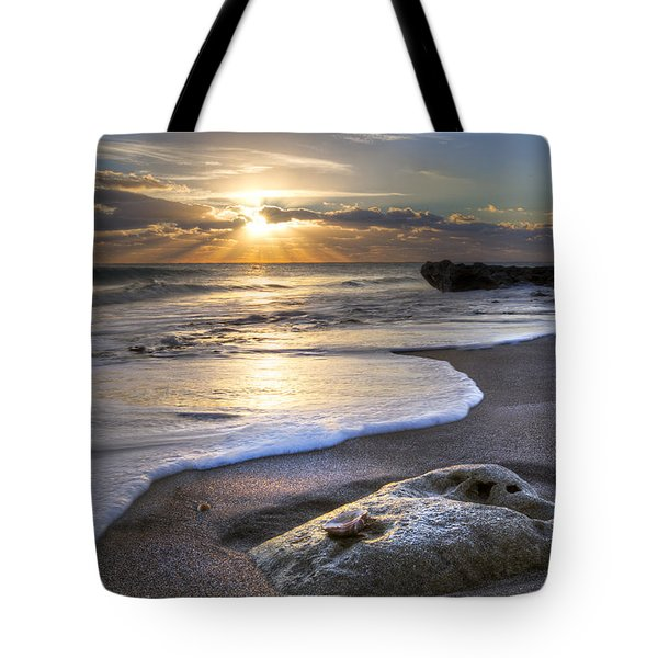 Seashell Tote Bag by Debra and Dave Vanderlaan
