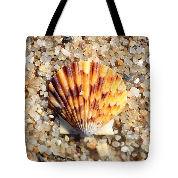Seashell on Sandy Beach Tote Bag by Carol Groenen
