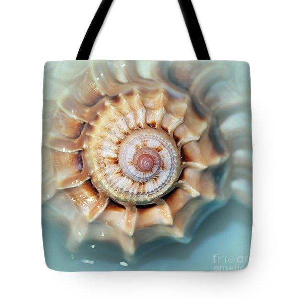 Seashell Wall Art 13 - Spiral Of Harpa Ventricosa Tote Bag by Kaye Menner