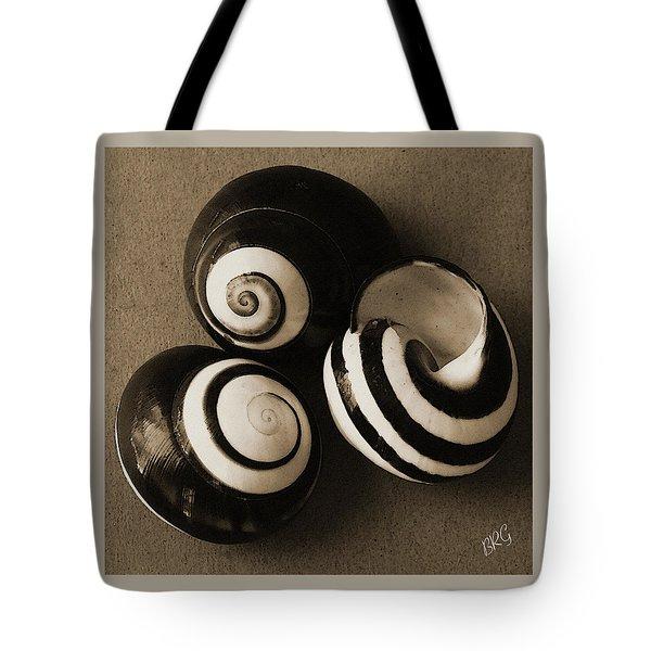 Seashells Spectacular No 27 Tote Bag by Ben and Raisa Gertsberg