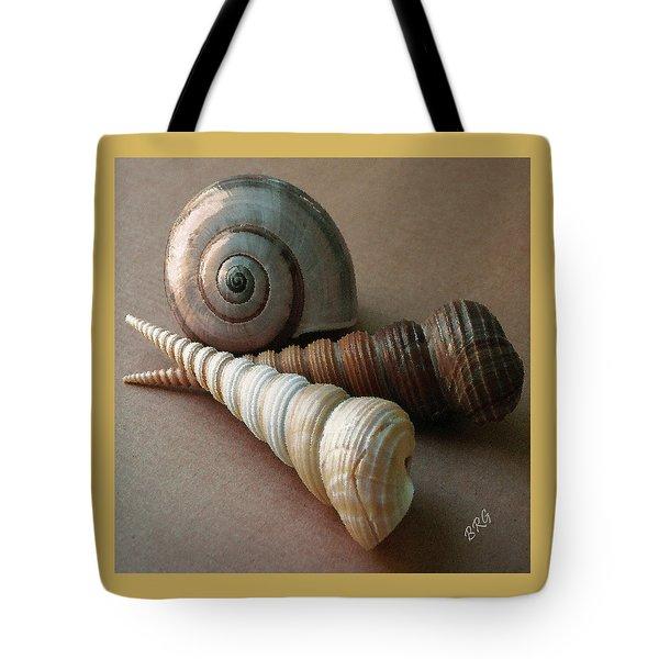 Seashells Spectacular No 29  Tote Bag by Ben and Raisa Gertsberg