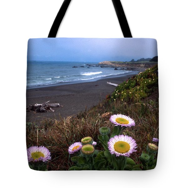 Seaside Daisies On Moonstone Beach Tote Bag by Kathy Yates
