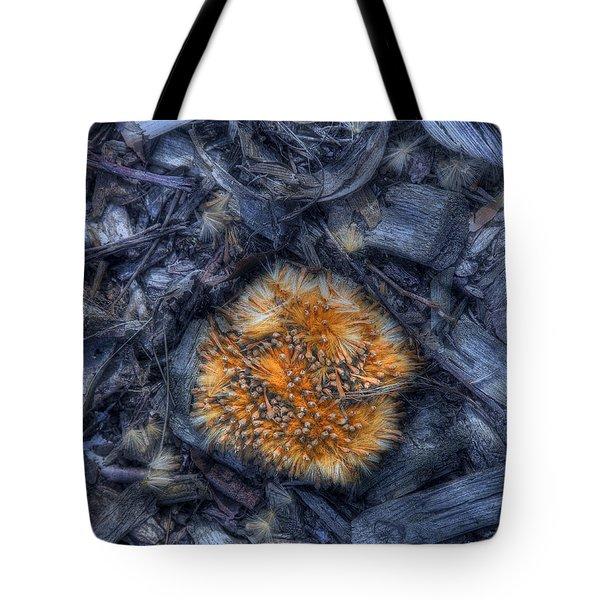 Seed Pod Tote Bag by Tom Mc Nemar