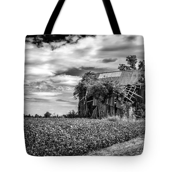 Seen Better Days Tote Bag by Jeff Burton