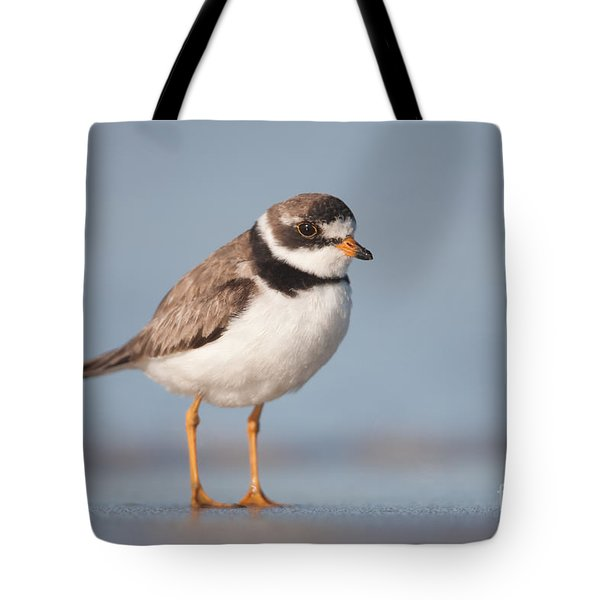 Semipalmated Plover Tote Bag by Clarence Holmes