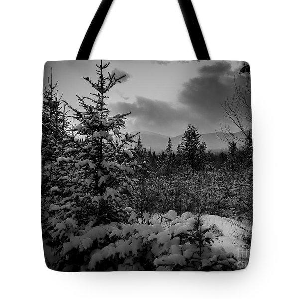 Serenity Tote Bag by David Rucker