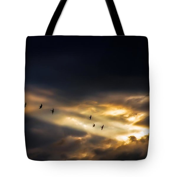 Seven Bird Vision Tote Bag by Bob Orsillo