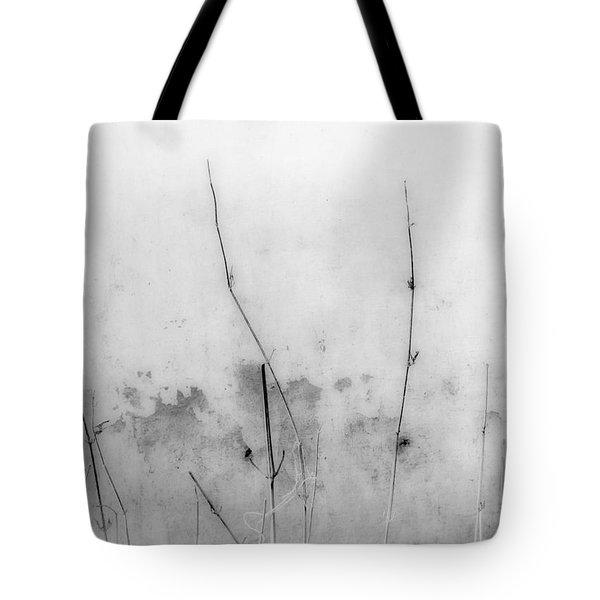 Shades Of Grey Tote Bag by Prakash Ghai