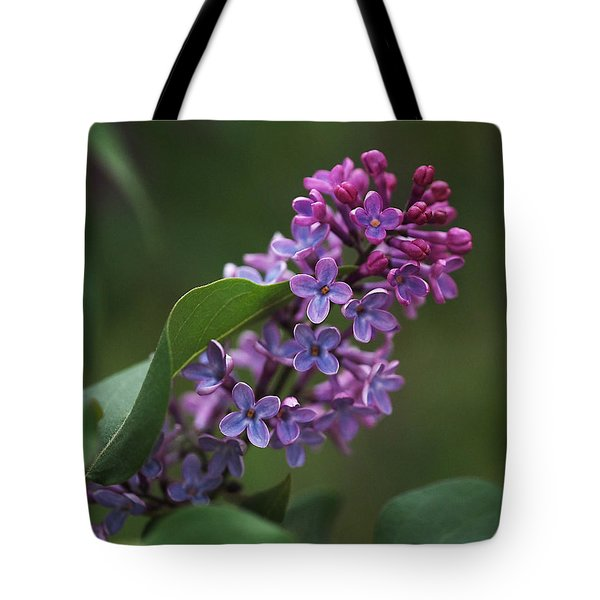 Shades Of Lilac Tote Bag by Rona Black