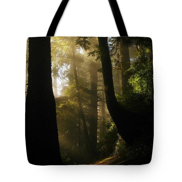 SHADOW DREAMS Tote Bag by Jeff  Swan
