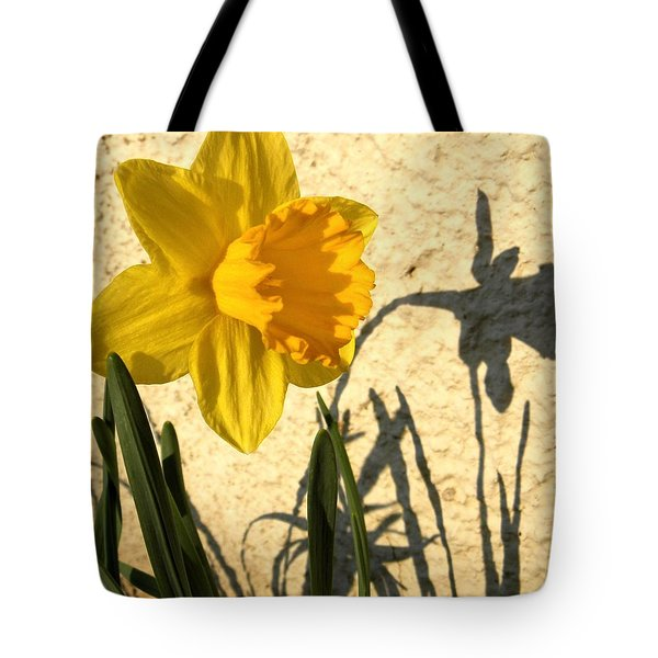 Shadowing Me Tote Bag by Chris Berry