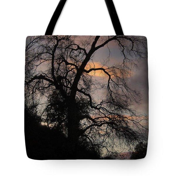 Shadowlands 5 Tote Bag by Bedros Awak