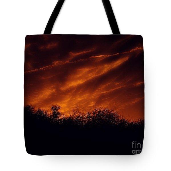 Shadowlands 7 Tote Bag by Bedros Awak