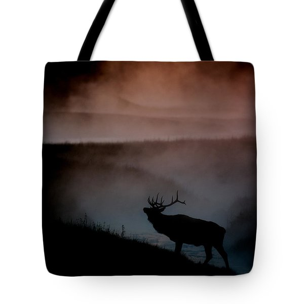 Shadows along the Madison Tote Bag by Gary Langley
