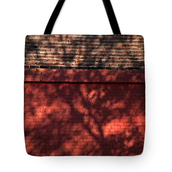 Shadows On The Wall Tote Bag by Karol  Livote