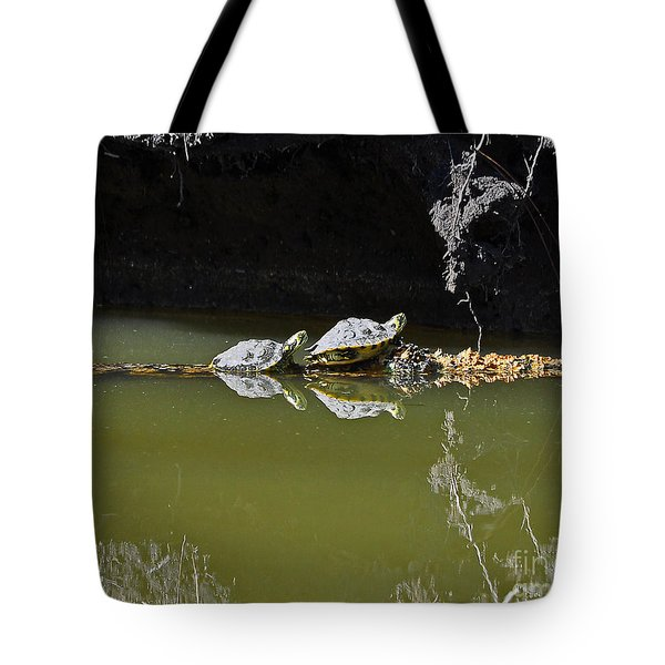 Sharing Sliders Tote Bag by Al Powell Photography USA