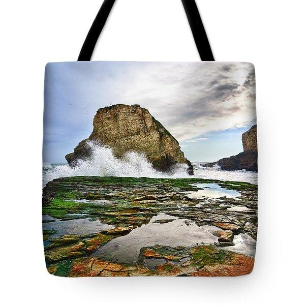 Shark Fin Cove Tote Bag by Jamie Pham