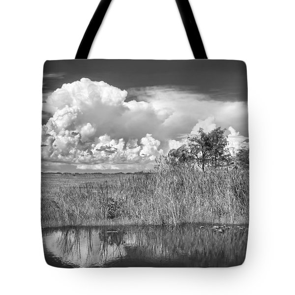 shark river slough BW Tote Bag by Rudy Umans