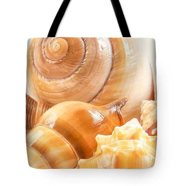 Shells Tote Bag by Jean Noren