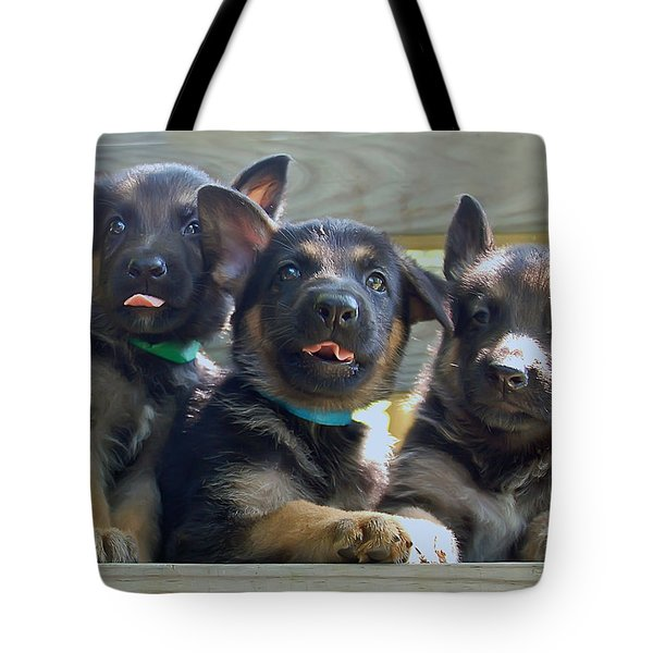 Shepherd Pups 3 Tote Bag by Aimee L Maher Photography and Art