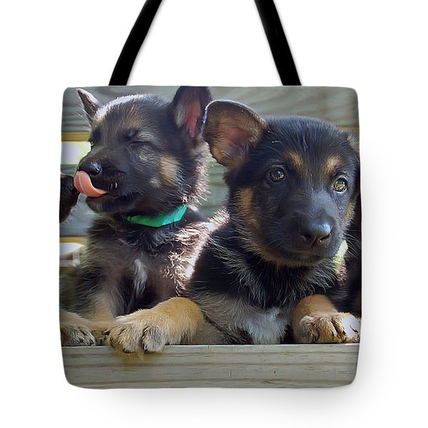 Shepherd Pups 5 Tote Bag by Aimee L Maher Photography and Art