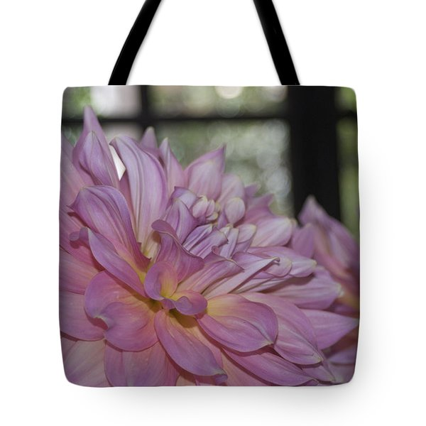 Shine Bright Like A Diamond Tote Bag by Trish Tritz