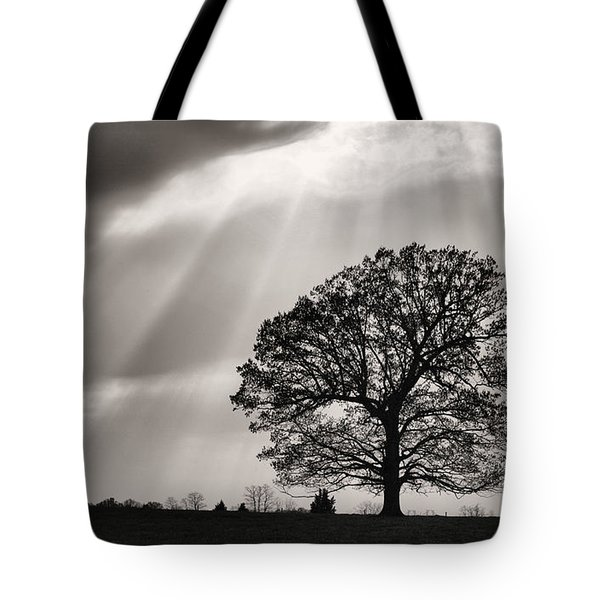 Shining Down Tote Bag by JC Findley