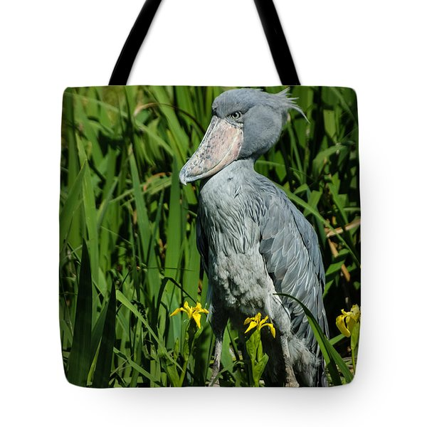 Shoebill Stork Tote Bag by Georgia Mizuleva