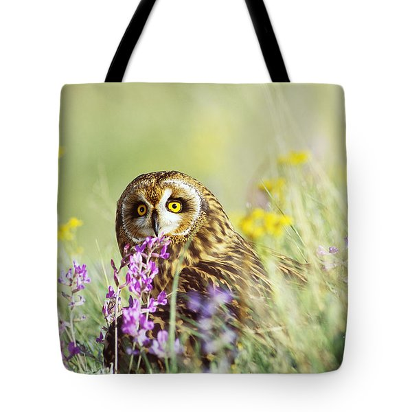 Short-eared Owl Tote Bag by Thomas and Pat Leeson