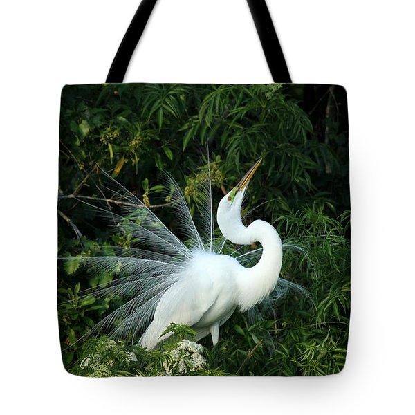 Showy Great White Egret Tote Bag by Sabrina L Ryan