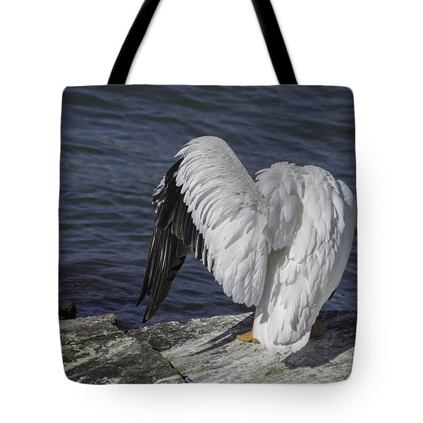 Shy Pelican Tote Bag by Diego Re