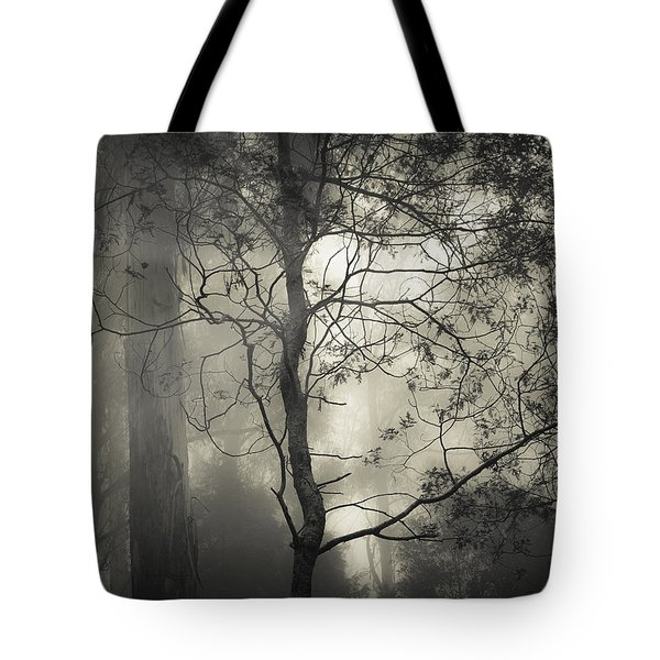 Silent Stirring Tote Bag by Amy Weiss