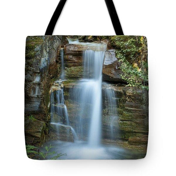Silky Flow Of Waterfalls, Rainbow Tote Bag by Roberta Murray