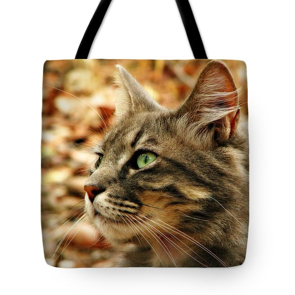 Silver Grey Tabby Cat Tote Bag by Michelle Wrighton