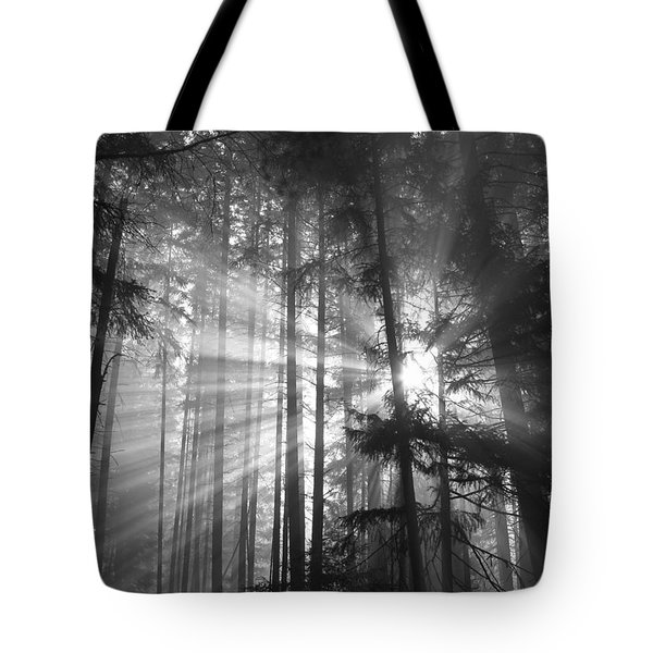 Silver Light Tote Bag by Diane Schuster
