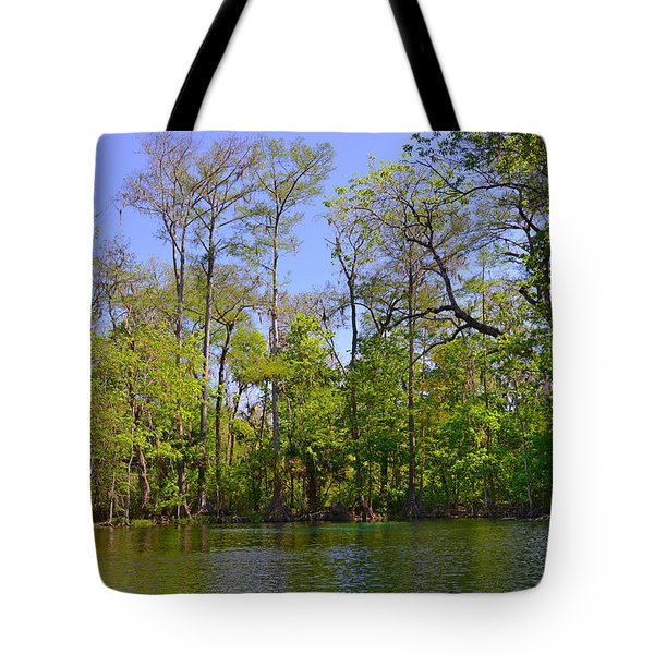 Silver River Florida Tote Bag by Christine Till