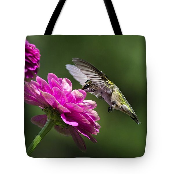 Simple Pleasure Hummingbird Delight Tote Bag by Christina Rollo