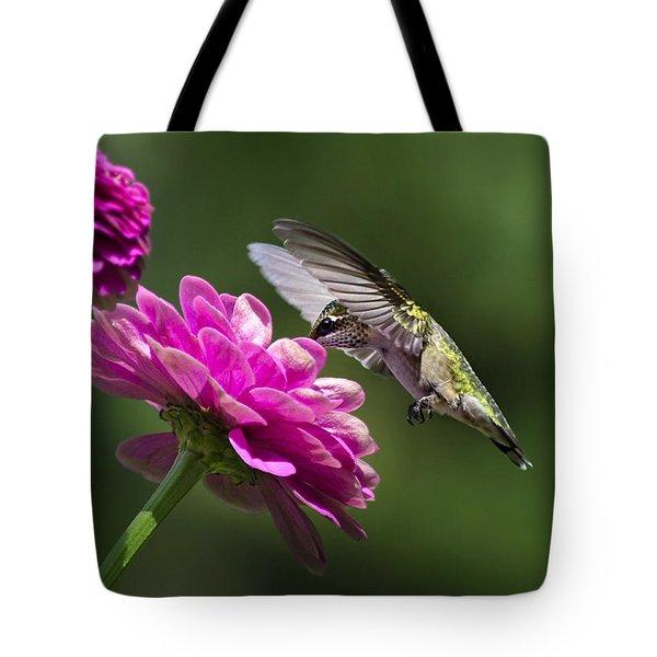 Simple Pleasure Hummingbird Delight Tote Bag by Christina Rollo