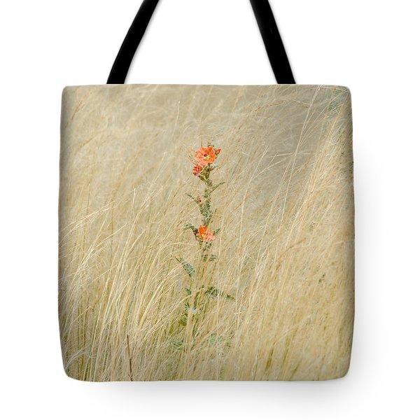 Simple Splash of Color Tote Bag by Debra Martz